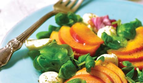 Salade perzik en mozzarella